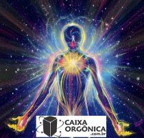 energia vital caixa orgonica